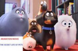 life movie 2017 torrent